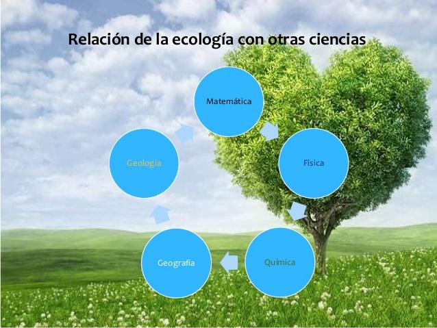 ecologia-3-638